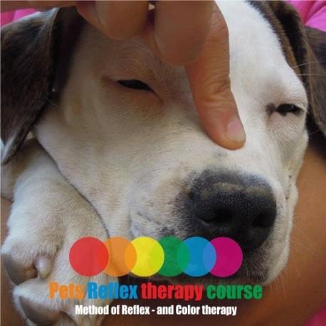 Curso Reflexologia para mascotas