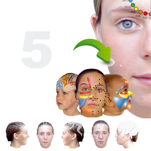Module 5 Facial Reflex therapy Distance course