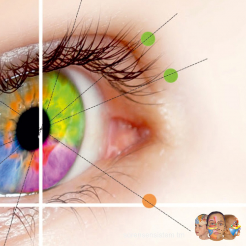 Course Ocular Therapy