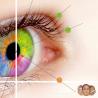 Kursus Ocular Terapi
