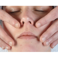 Course Facial Lymphatic Drainage and Facial Reflexology