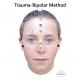 Pack of ENGLISH CHARTS Trauma-Bipolar Method 4 charts
