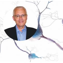 Dr. MANZANARES NEURO-FODZONETRAPI METODE ® 2020 Københav