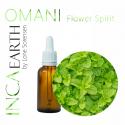 Omani Peppermint Essential Oil, 10ml