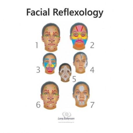 Laminas Reflexologia Facial Pack